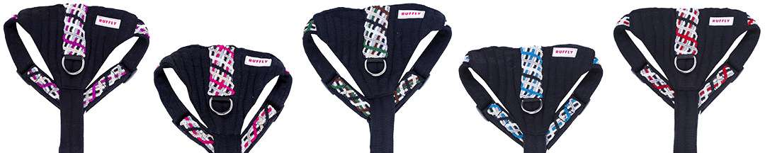 Decorative padded chests of five dog harnesses in unique colors