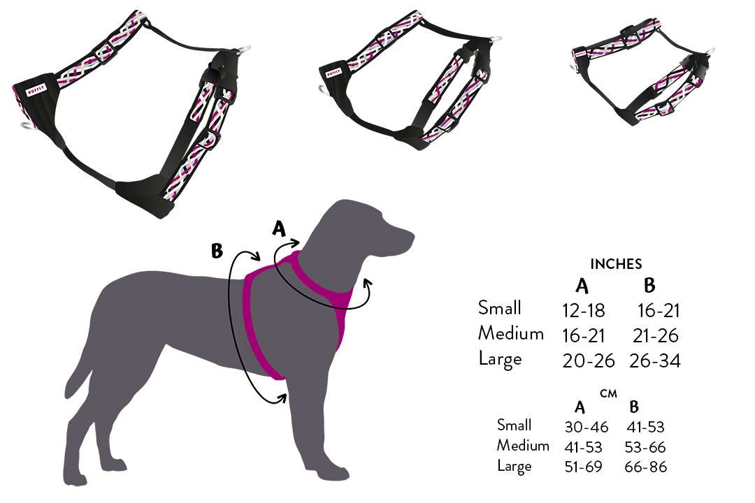 Artistic graphical diagram of handmade knotted harness in three sizes with measurements