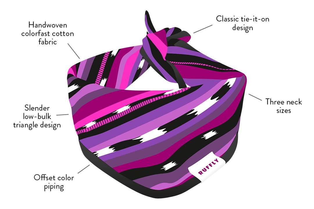 Artistic graphical diagram of outdoor dog bandana that highlights the key features