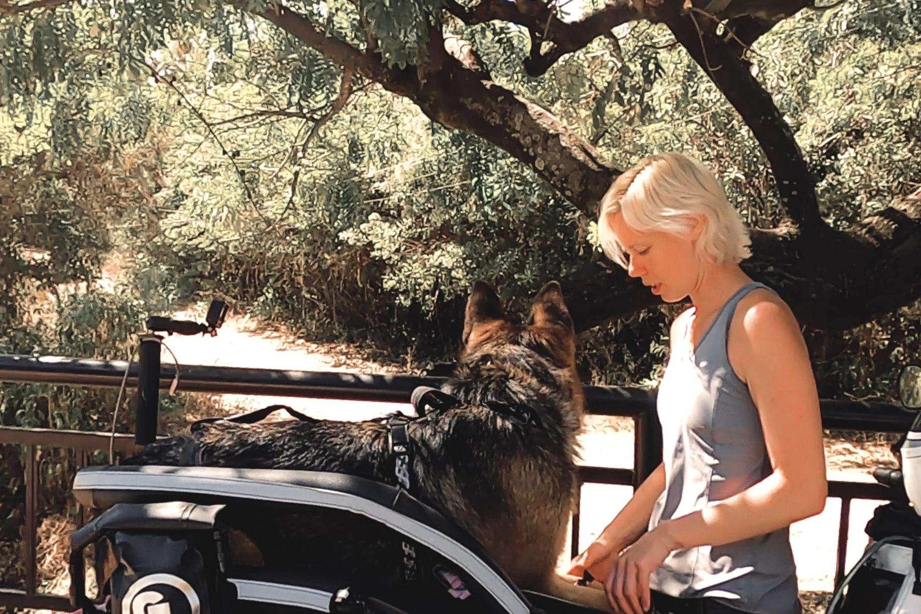 Blonde woman secures German Shepherd into motorcycle dog carrier harness