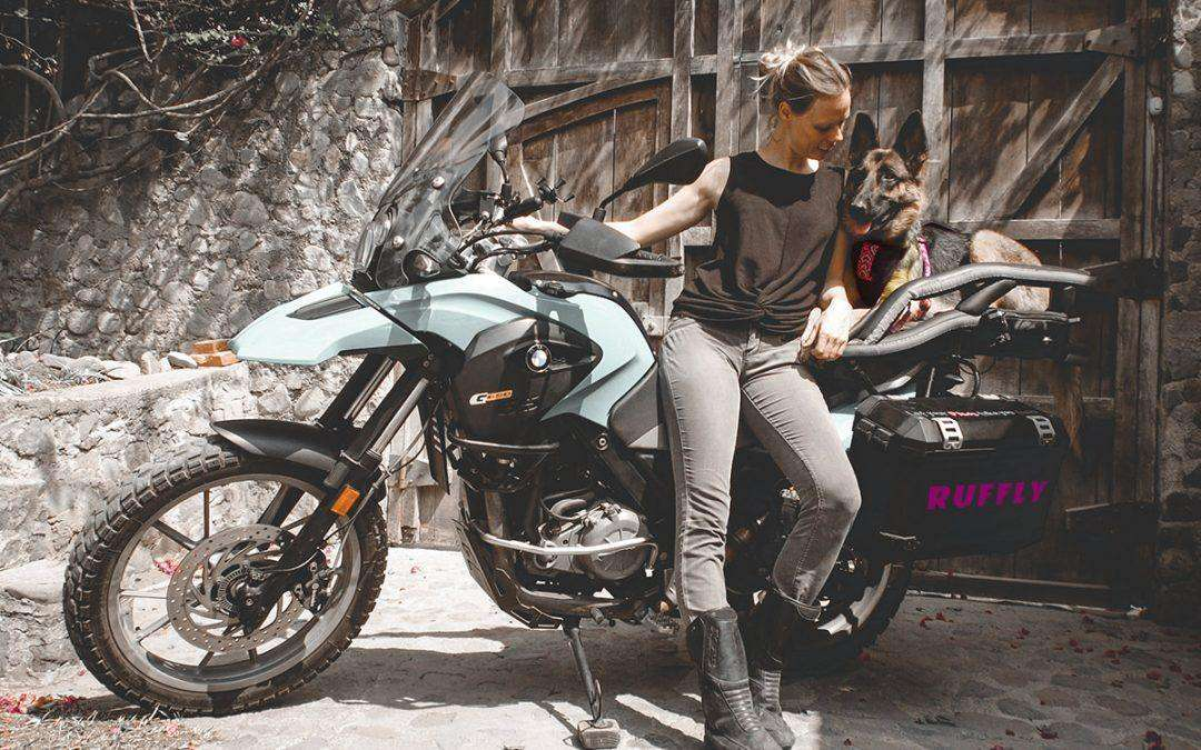 How to Secure Your Dog into Their Motorcycle Dog Carrier and What Harness to Use