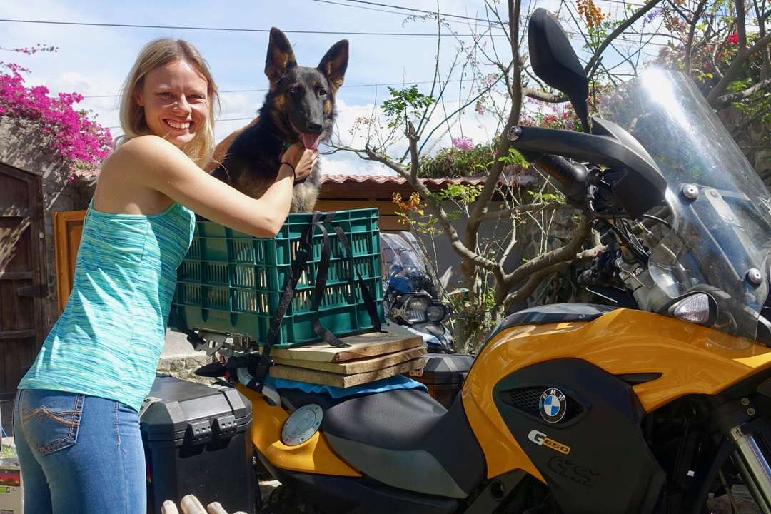 Blonde woman with German Shepherd in green plastic crate on yellow motorcycle