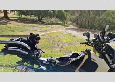 Black terrier panting in a motorcycle dog carrier on a dual sport bike in the countryside