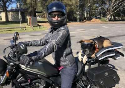 Woman in leathers with a medium sized Kelpie Cross on her cruiser motorcycle in a crate