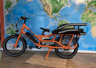Large dog carrier mounted to an orange electric bicycle