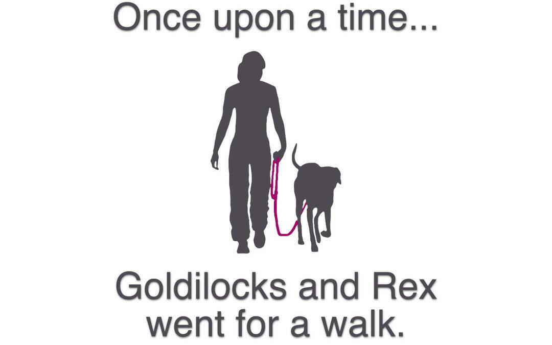 "Silhouette of woman and dog with text: ""Once upon a time…Goldilocks and Rex went for a walk."""
