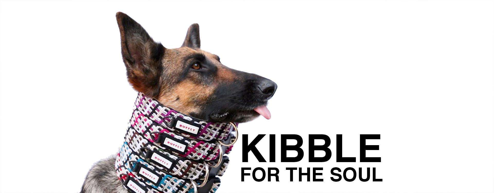 """German Shepherd with tongue out wears five collars in different colors and overlaid text: """"KIBBLE FOR THE SOUL"""""""