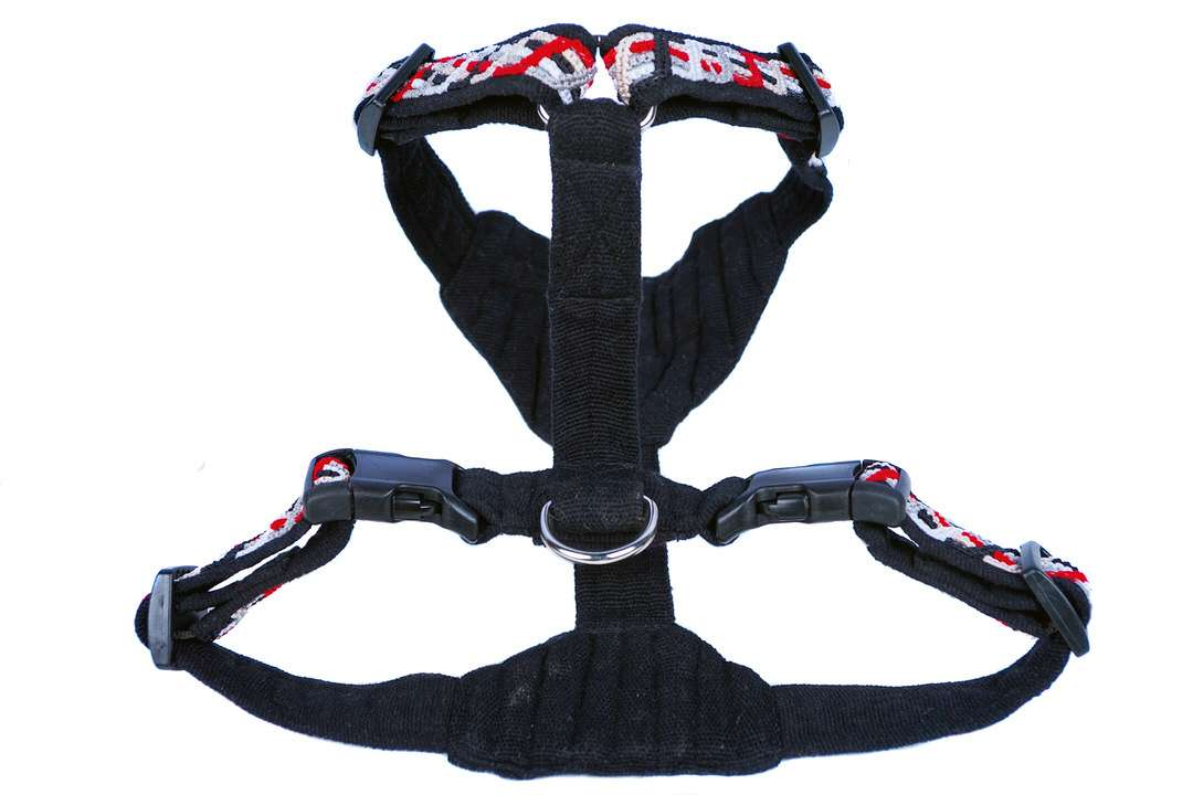 Top view of large red outdoor dog harness with reflective ribbon under knotted band