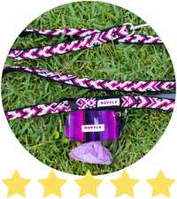 Pink and black dog leash with matching poop bag holder lays on grass