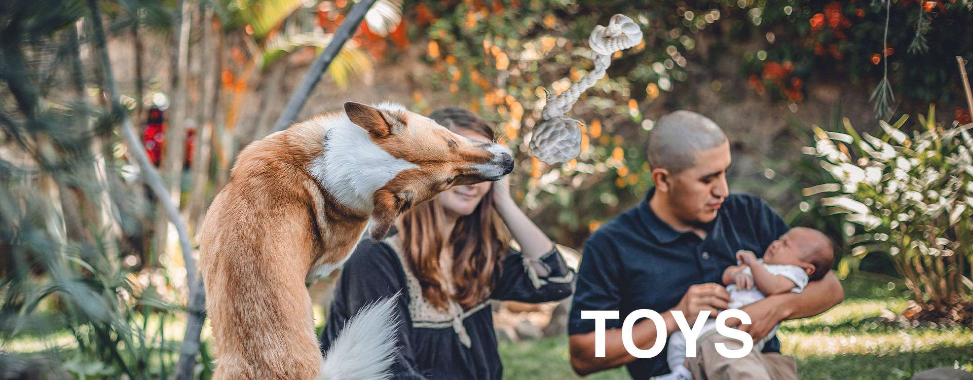 """Brown and white dog leaps in the air to catch a natural cotton dog fetch toy while a father soothes his baby with overlaid text: """"TOYS"""""""