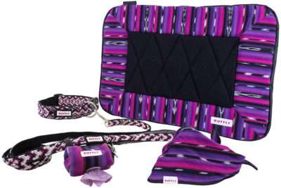 Matching dog collar, leash, poop bag holder, bed, and bandana in pink and purple
