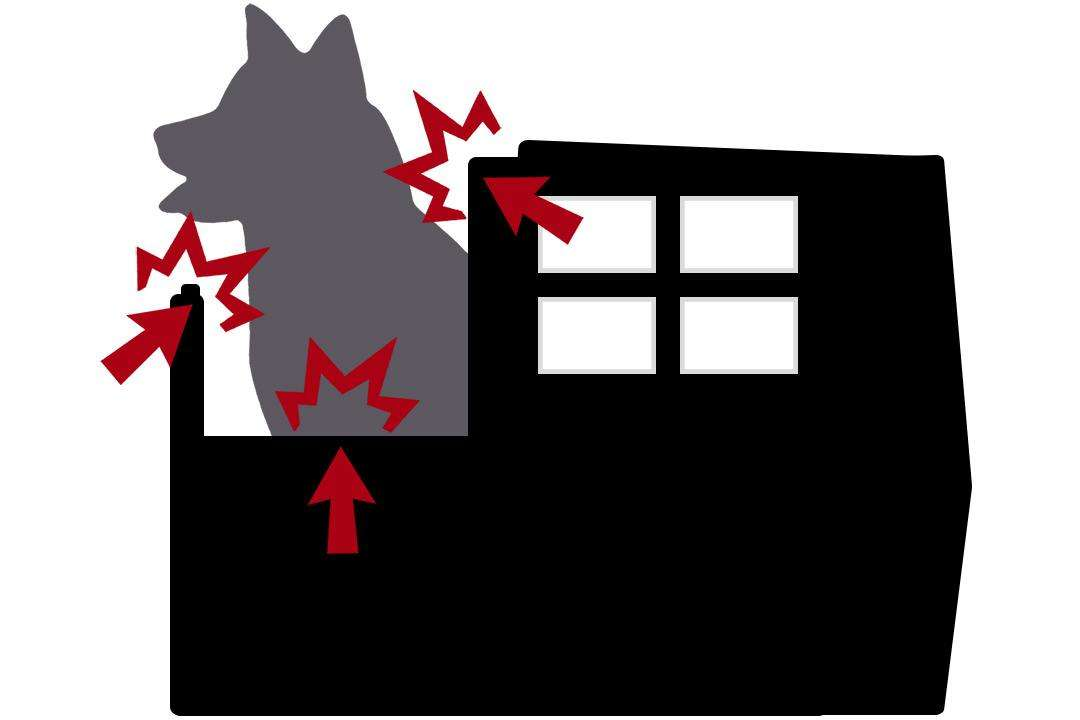 Silhouette diagram identifying safety hazards of crate or kennel-style motorcycle dog carriers