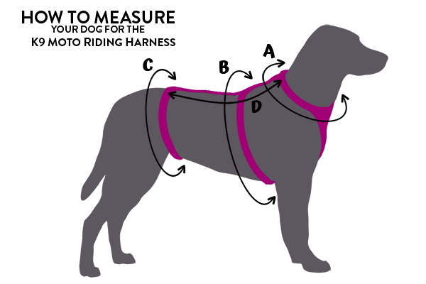 Simple dog silhouette diagram with arrows indicating measurements need for harness sizing