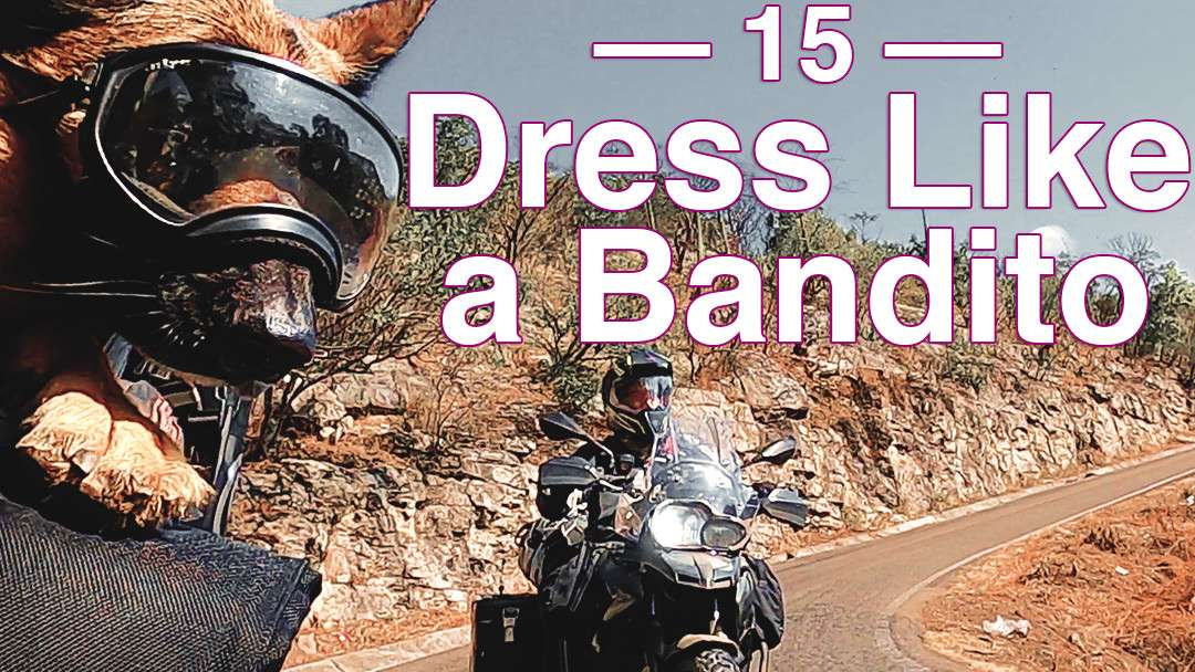 German Shepherd's leans into fast motorcycle riding through twisty mountain roads with man on BMW adventure motorcycle following closely behind