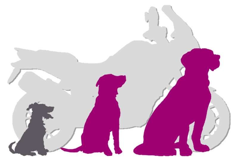 Small, medium, and large dog silhouettes in front of light grey motorcycle vector
