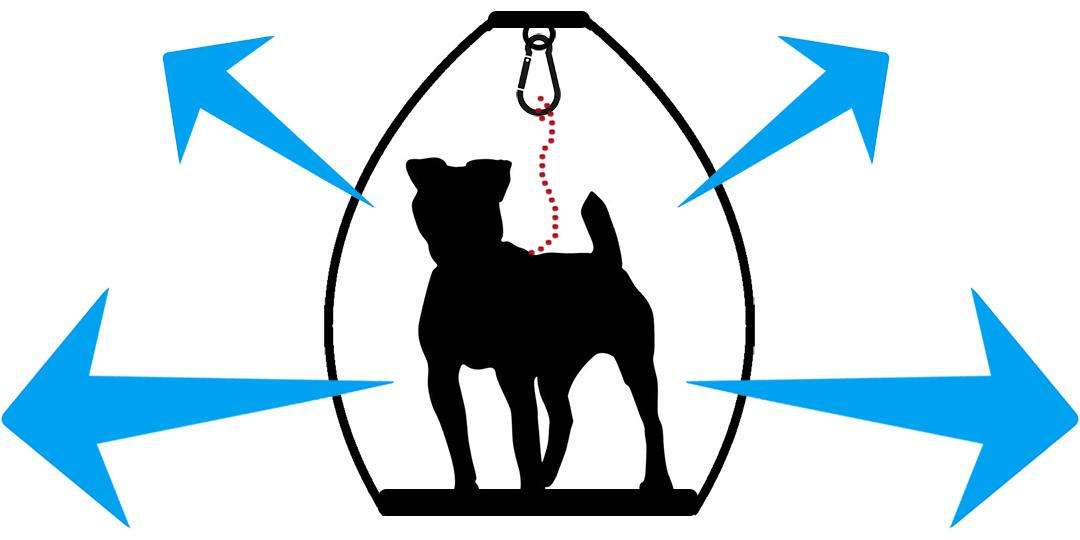 Silhouette diagram of safety hazards of standing and free-movement style motorcycle dog carriers