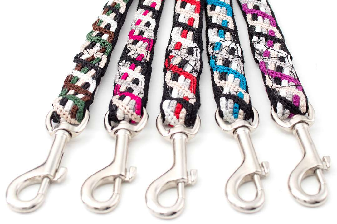 Stainless swivel clips and five reflective outdoor dog leashes in different colors